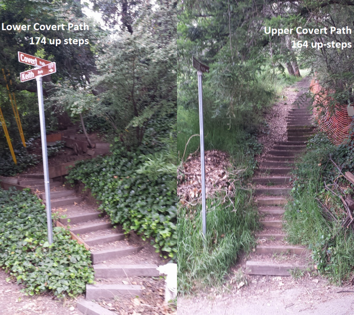 Lower and Upper Covert Paths