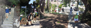 SoCal Stair Climbers Website Home Page Photo - 1440x460