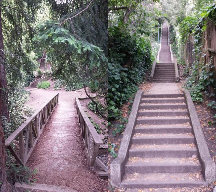 Tamalpais stairway - 184 steps