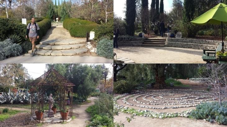 Arlington Garden Collage